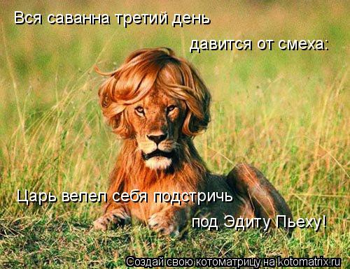 Котоматрица: Вся саванна третий день давится от смеха: Царь велел себя подстричь под Эдиту Пьеху!