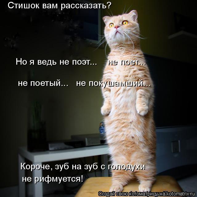 Котоматрица: Стишок вам рассказать? Но я ведь не поэт...    не поет...  не поетый...   не покушамший...  Короче, зуб на зуб с голодухи не рифмуется!