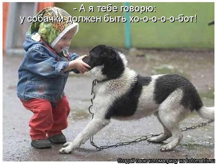 Котоматрица: - А я тебе говорю:  у собачки должен быть хо-о-о-о-о-бот!