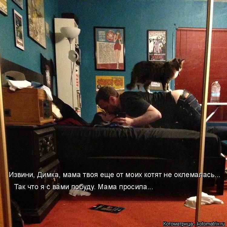 Котоматрица: Извини, Димка, мама твоя еще от моих котят не оклемалась... Так что я с вами побуду. Мама просила...