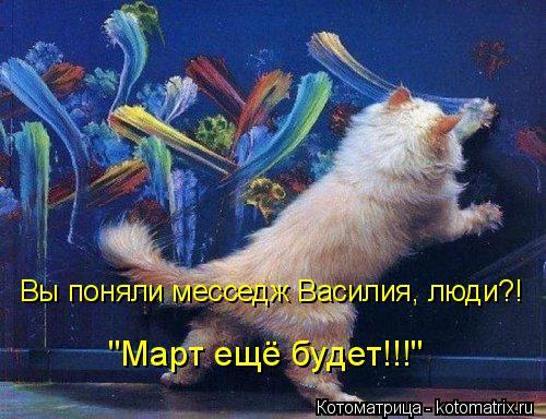 """Котоматрица: Вы поняли месседж Василия, люди?! """"Март ещё будет!!!"""""""