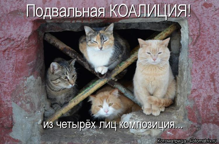 Котоматрица: Подвальная КОАЛИЦИЯ! из четырёх лиц композиция...