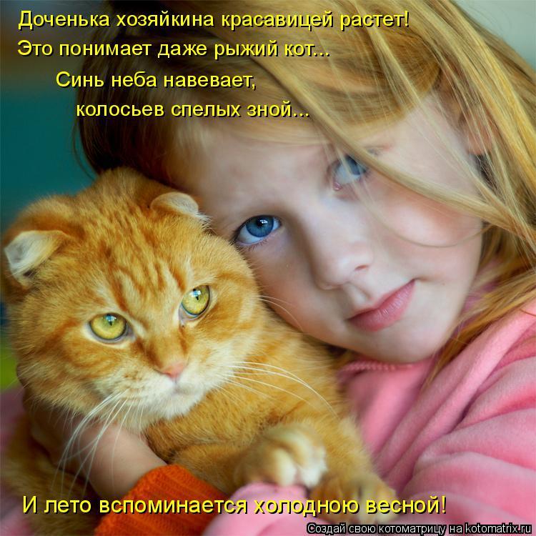 Котоматрица: Доченька хозяйкина красавицей растет! Это понимает даже рыжий кот... Синь неба навевает,   колосьев спелых зной... И лето вспоминается холодн?