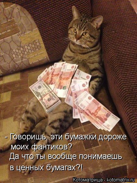 Котоматрица: - Говоришь, эти бумажки дороже моих фантиков? Да что ты вообще понимаешь в ценных бумагах?!