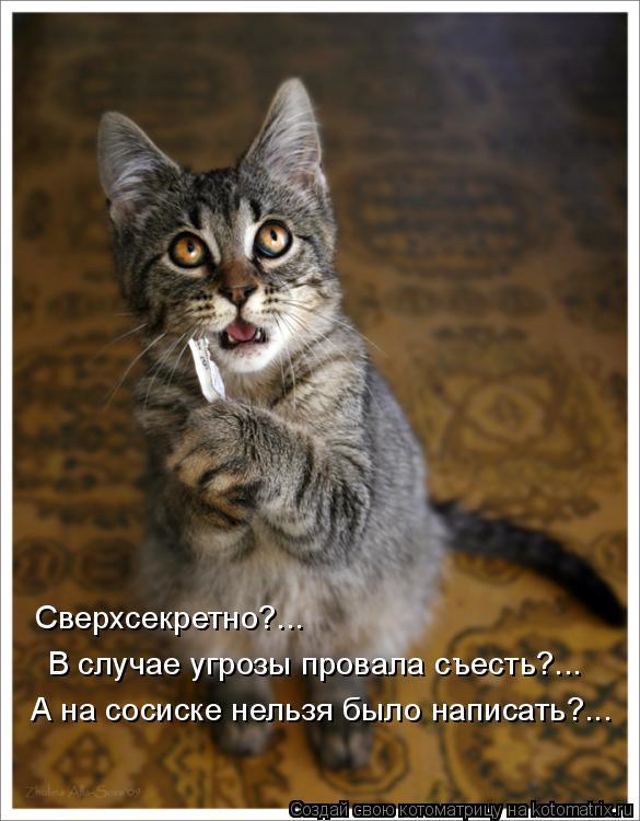 Котоматрица: Сверхсекретно?... В случае угрозы провала съесть?... А на сосиске нельзя было написать?...