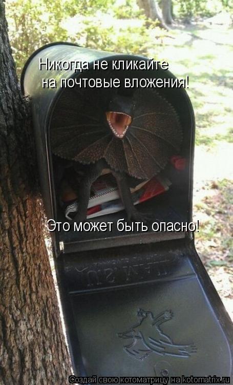 Котоматрица: Никогда не кликайте на почтовые вложения! Это может быть опасно!