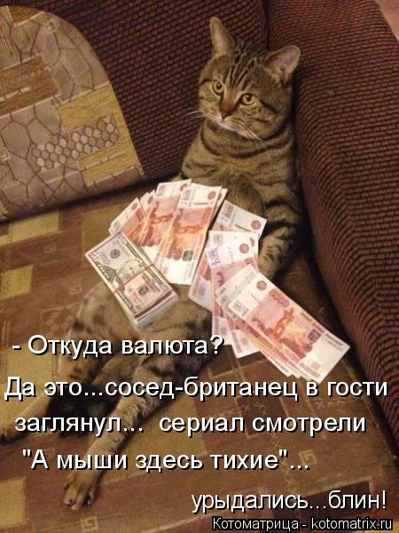 """Котоматрица: - Откуда валюта? Да это...сосед-британец в гости заглянул...  сериал смотрели """"А мыши здесь тихие""""... урыдались...блин!"""