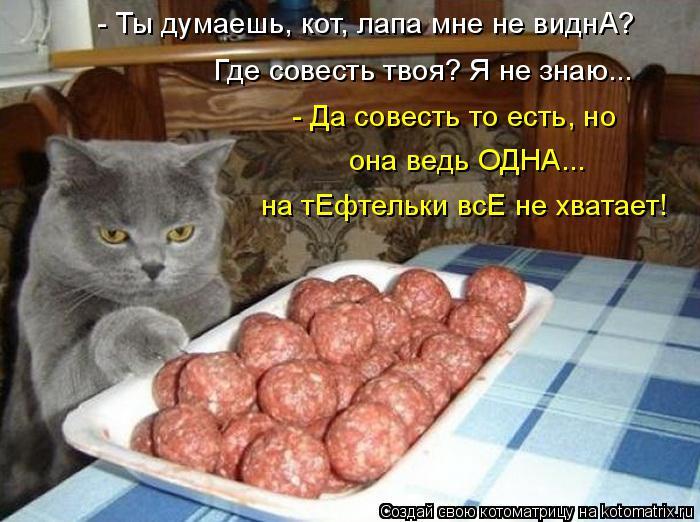 Котоматрица: - Ты думаешь, кот, лапа мне не виднА? Где совесть твоя? Я не знаю... - Да совесть то есть, но она ведь ОДНА... на тЕфтельки всЕ не хватает!