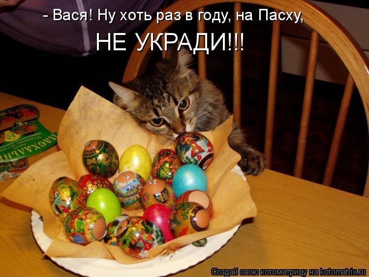 Котоматрица: - Вася! Ну хоть раз в году, на Пасху, НЕ УКРАДИ!!!