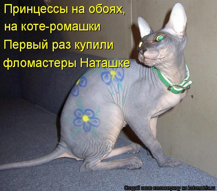 Котоматрица: Принцессы на обоях, на коте-ромашки Первый раз купили фломастеры Наташке