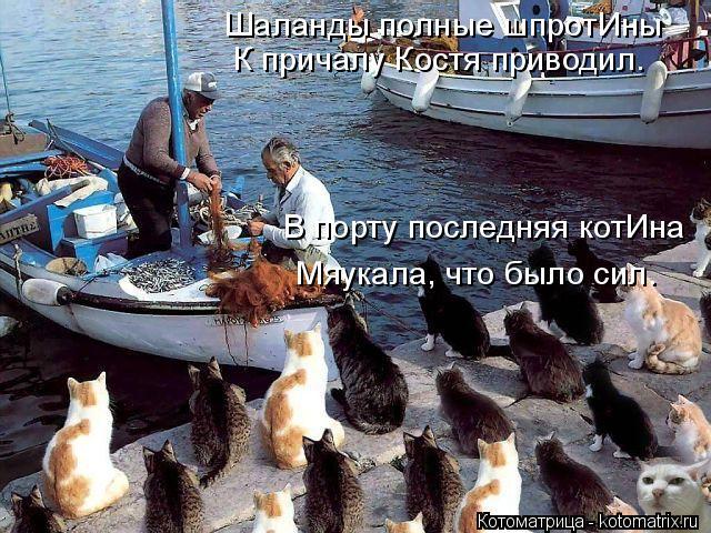 Котоматрица: Шаланды полные шпротИны К причалу Костя приводил. В порту последняя котИна Мяукала, что было сил.