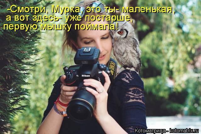Котоматрица: -Смотри, Мурка, это ты- маленькая, а вот здесь- уже постарше,  первую мышку поймала!