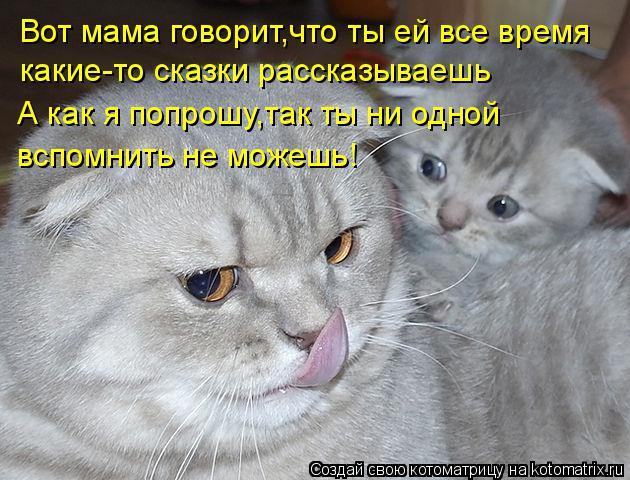 Котоматрица: Вот мама говорит,что ты ей все время какие-то сказки рассказываешь А как я попрошу,так ты ни одной вспомнить не можешь!