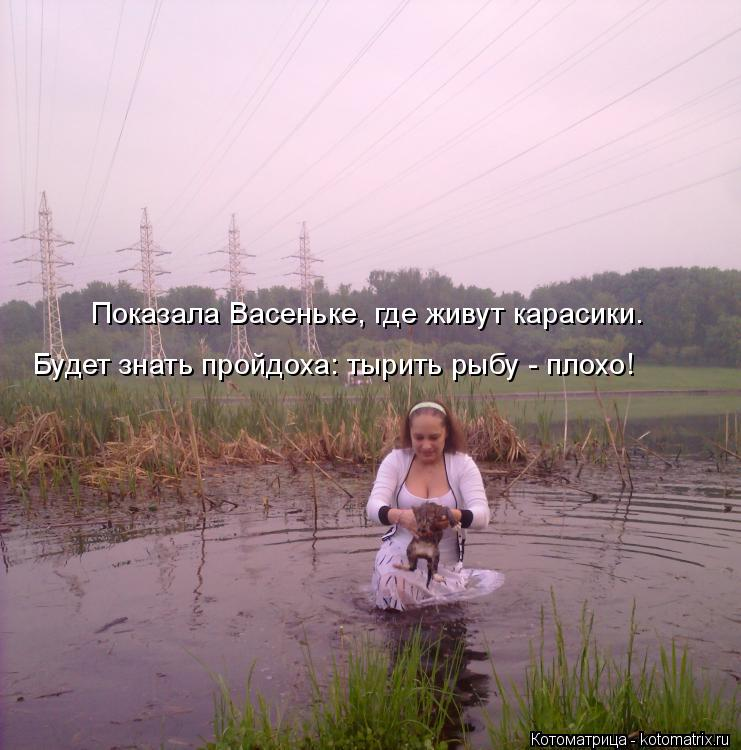 Котоматрица: Показала Васеньке, где живут карасики. Будет знать пройдоха: тырить рыбу - плохо!