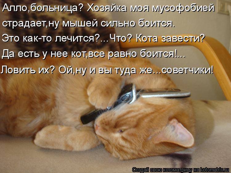 Котоматрица: Алло,больница? Хозяйка моя мусофобией  страдает,ну мышей сильно боится. Это как-то лечится?...Что? Кота завести? Да есть у нее кот,все равно бо?