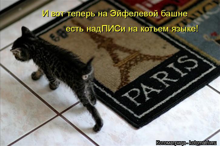 Котоматрица: И вот теперь на Эйфелевой башне есть надПИСи на котьем языке!