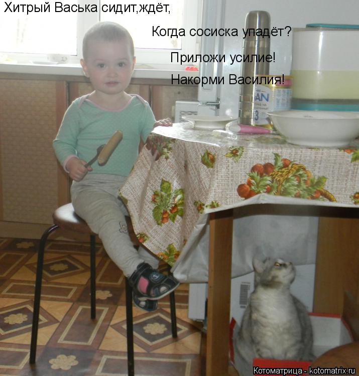 Котоматрица: Хитрый Васька сидит,ждёт, Когда сосиска упадёт? Приложи усилие! Накорми Василия!