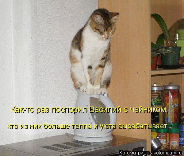 Котоматрица: Как-то раз поспорил Василий с чайником, кто из них больше тепла и уюта вырабатывает...
