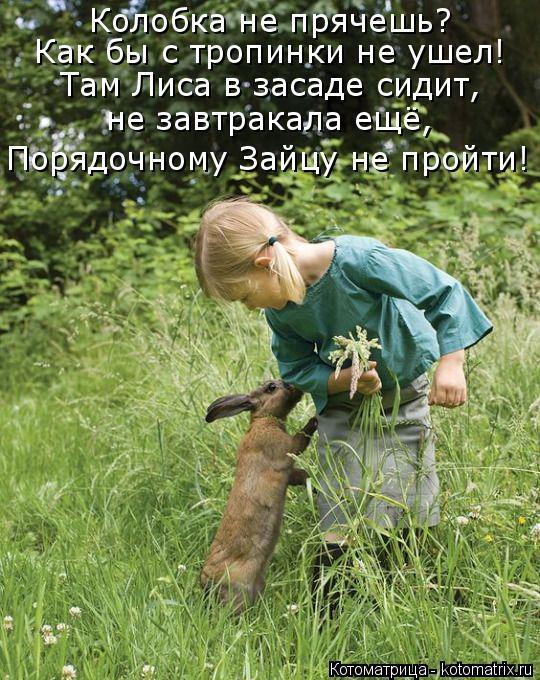 Котоматрица: Колобка не прячешь?  Как бы с тропинки не ушел! Там Лиса в засаде сидит, не завтракала ещё, Порядочному Зайцу не пройти!