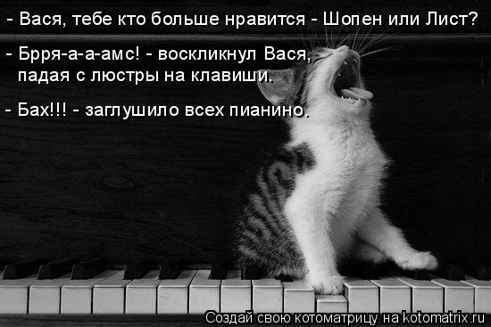 Котоматрица: - Вася, тебе кто больше нравится - Шопен или Лист? - Брря-а-а-амс! - воскликнул Вася,  падая с люстры на клавиши. - Бах!!! - заглушило всех пианино.