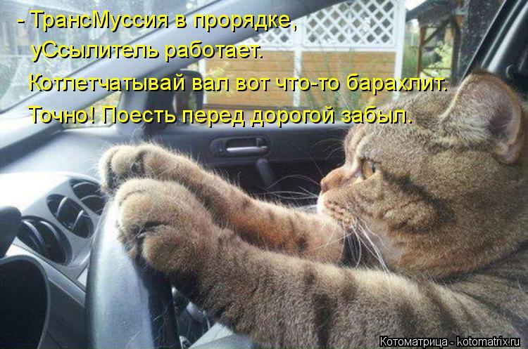 Котоматрица: - ТрансМуссия в прорядке, уСсылитель работает. Котлетчатывай вал вот что-то барахлит. Точно! Поесть перед дорогой забыл.