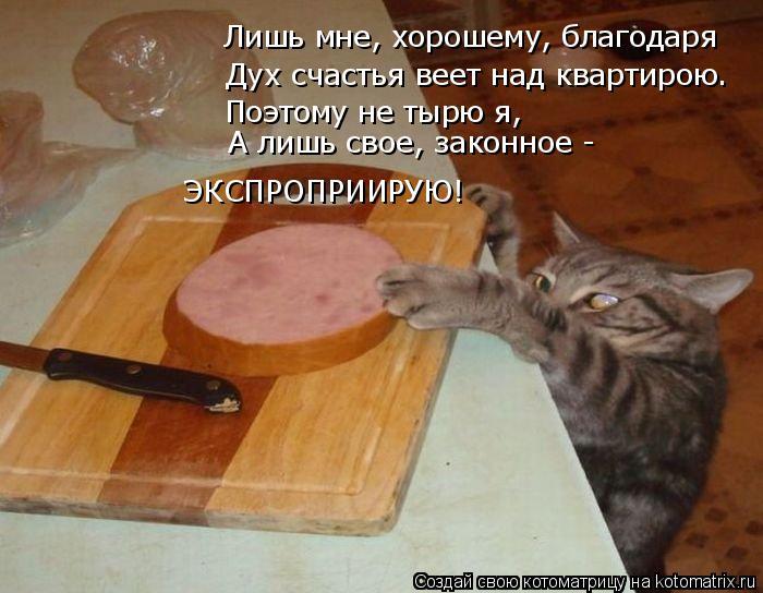 Котоматрица: Лишь мне, хорошему, благодаря Дух счастья веет над квартирою. Поэтому не тырю я, А лишь свое, законное -  ЭКСПРОПРИИРУЮ!