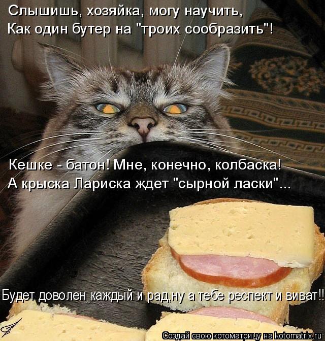 """Котоматрица: Слышишь, хозяйка, могу научить, Кешке - батон! Мне, конечно, колбаска! А крыска Лариска ждет """"сырной ласки""""... Будет доволен каждый и рад,ну а те?"""