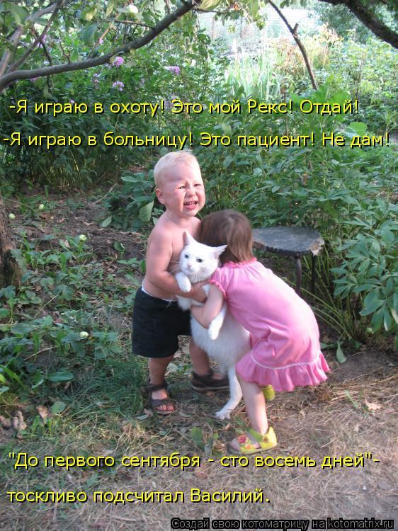 http://kotomatrix.ru/images/lolz/2018/05/14/kotomatritsa_g.jpg