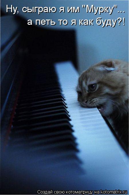 """Котоматрица: Ну, сыграю я им """"Мурку""""... а петь то я как буду?!"""