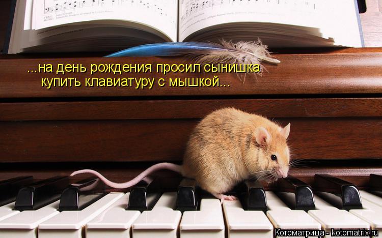 http://kotomatrix.ru/images/lolz/2018/05/17/kotomatritsa_X.jpg