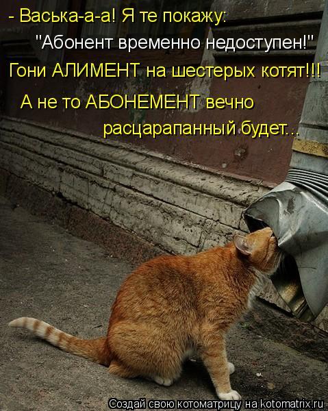 """Котоматрица: - Васька-а-а! Я те покажу: """"Абонент временно недоступен!"""" Гони АЛИМЕНТ на шестерых котят!!! А не то АБОНЕМЕНТ вечно расцарапанный будет..."""