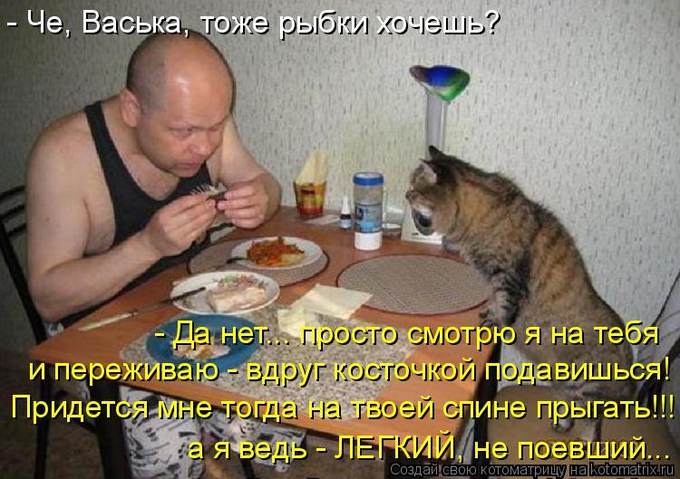 Котоматрица: - Че, Васька, тоже рыбки хочешь? - Да нет... просто смотрю я на тебя и переживаю - вдруг косточкой подавишься! Придется мне тогда на твоей спине ?