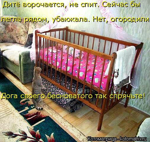 Котоматрица: Дога своего бесноватого так спрячьте! Дитё ворочается, не спит. Сейчас бы легла рядом, убаюкала. Нет, огородили!