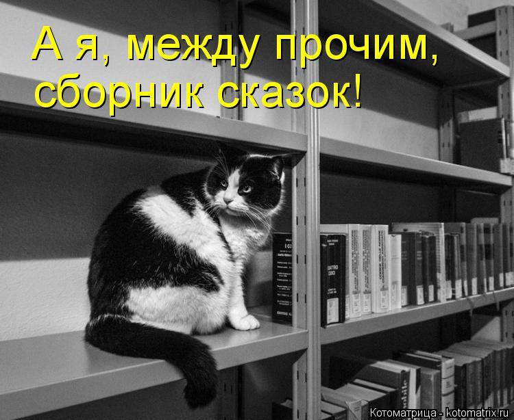 Котоматрица: А я, между прочим,  сборник сказок!