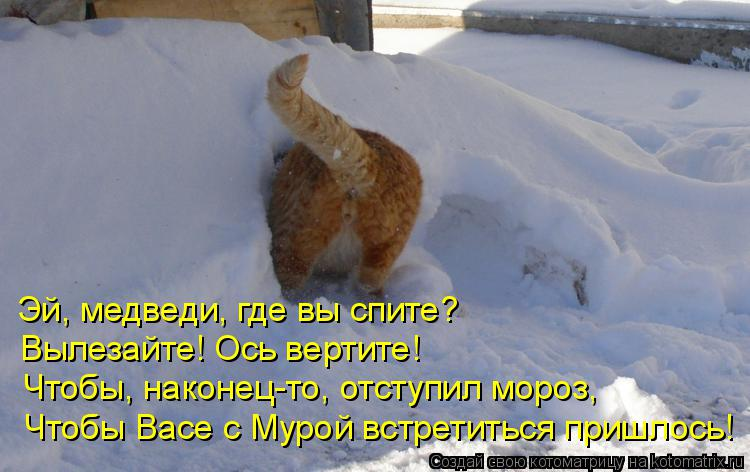 Котоматрица: Эй, медведи, где вы спите? Вылезайте! Ось вертите! Чтобы, наконец-то, отступил мороз, Чтобы Васе с Мурой встретиться пришлось!