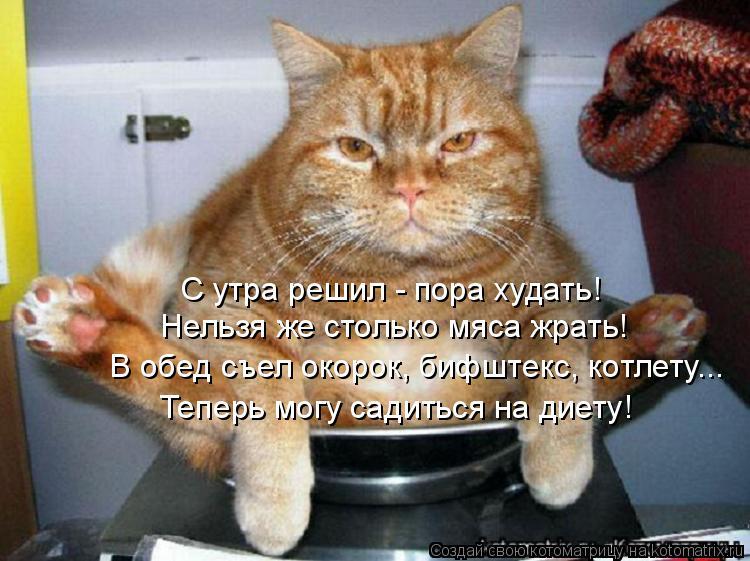Котоматрица: С утра решил - пора худать! Нельзя же столько мяса жрать!  В обед съел окорок, бифштекс, котлету... Теперь могу садиться на диету!