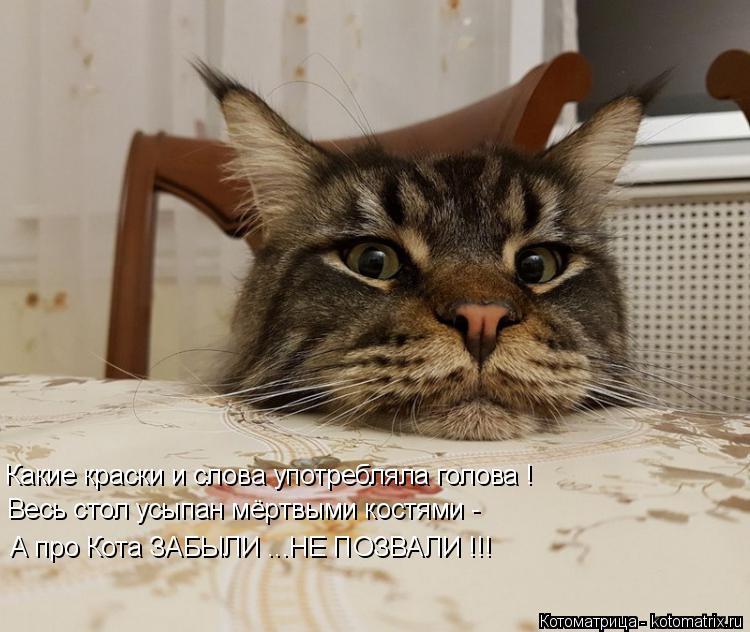 Котоматрица: Какие краски и слова употребляла голова ! Весь стол усыпан мёртвыми костями - А про Кота ЗАБЫЛИ ...НЕ ПОЗВАЛИ !!!