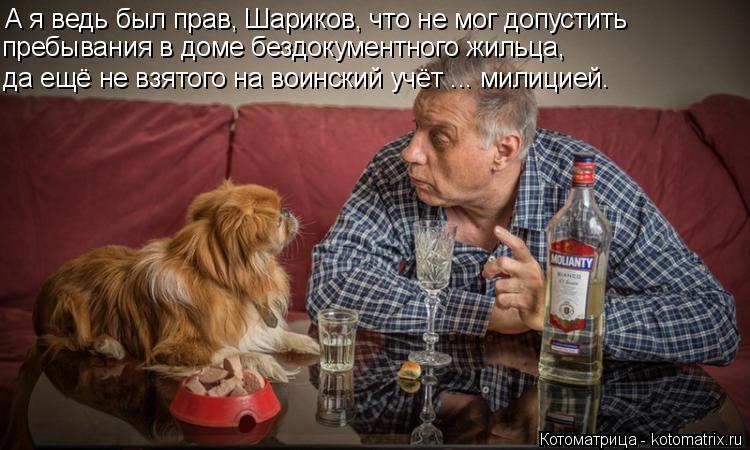 Котоматрица: А я ведь был прав, Шариков, что не мог допустить пребывания в доме бездокументного жильца, да ещё не взятого на воинский учёт ... милицией.