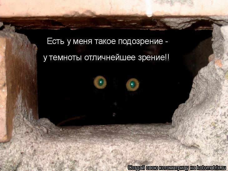 Котоматрица: у темноты отличнейшее зрение!! Есть у меня такое подозрение -