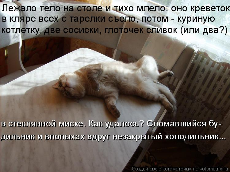 Котоматрица: Лежало тело на столе и тихо млело: оно креветок  в кляре всех с тарелки съело, потом - куриную котлетку, две сосиски, глоточек сливок (или два?)