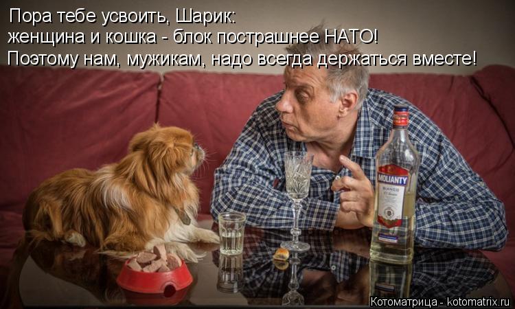 Котоматрица: Пора тебе усвоить, Шарик: женщина и кошка - блок пострашнее НАТО! Поэтому нам, мужикам, надо всегда держаться вместе!