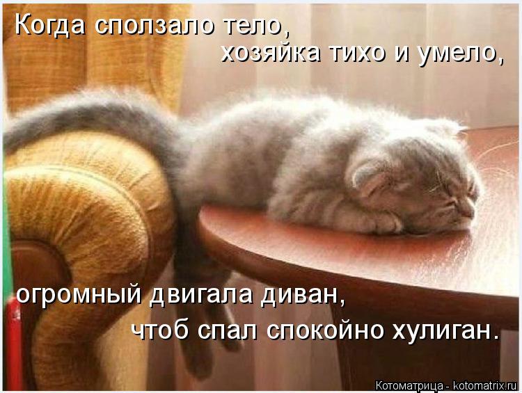 Котоматрица: Когда сползало тело,  хозяйка тихо и умело,  огромный двигала диван, чтоб спал спокойно хулиган.