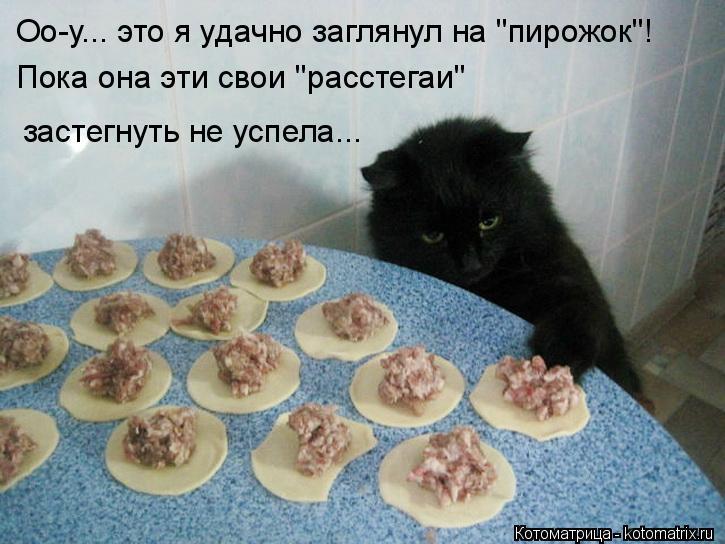 """Котоматрица: Оо-у... это я удачно заглянул на """"пирожок""""! Пока она эти свои """"расстегаи"""" застегнуть не успела..."""