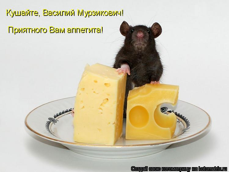 Котоматрица: Кушайте, Василий Мурзикович! Приятного Вам аппетита!