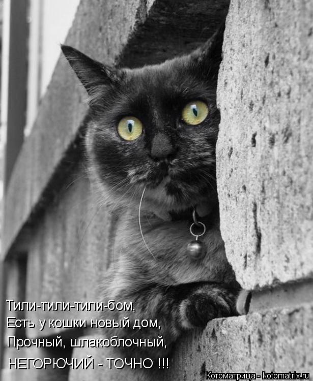 Котоматрица: Тили-тили-тили-бом, Есть у кошки новый дом, Прочный, шлакоблочный, НЕГОРЮЧИЙ - ТОЧНО !!!