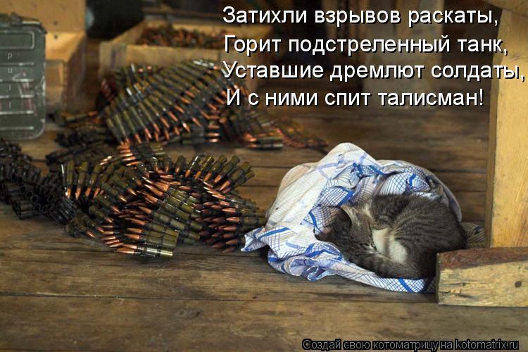 Котоматрица: Уставшие дремлют солдаты, И с ними спит талисман! Затихли взрывов раскаты, Горит подстреленный танк,