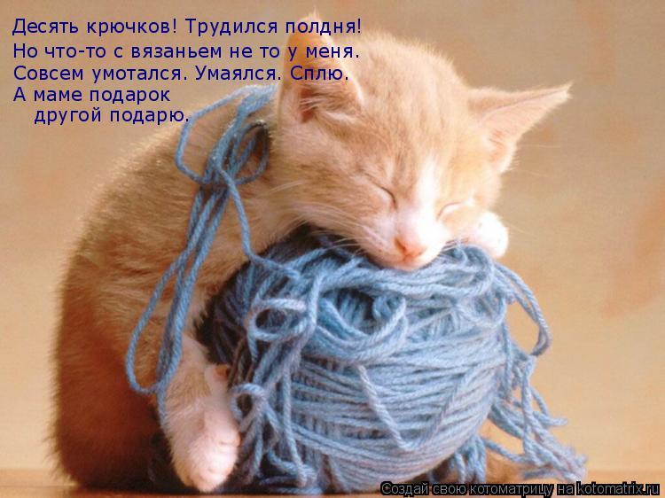Котоматрица: Десять крючков! Трудился полдня! Но что-то с вязаньем не то у меня. Совсем умотался. Умаялся. Сплю. А маме подарок  другой подарю.