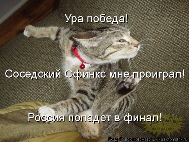 Котоматрица: Соседский Сфинкс мне проиграл! Россия попадет в финал! Ура победа!