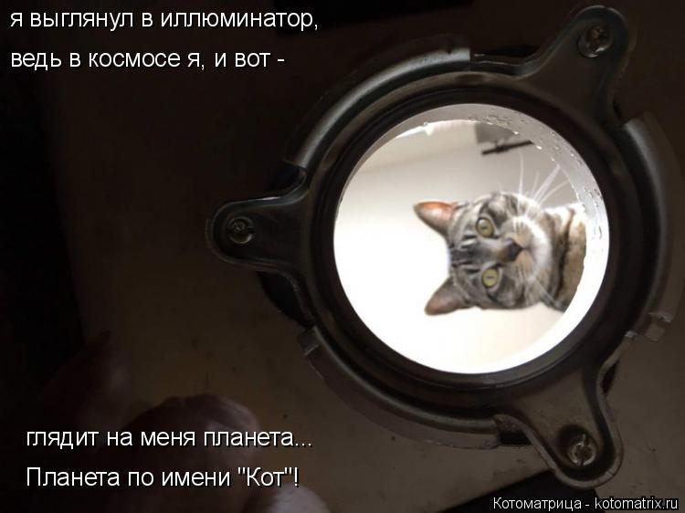 "Котоматрица: я выглянул в иллюминатор, ведь в космосе я, и вот -  глядит на меня планета... Планета по имени ""Кот""!"