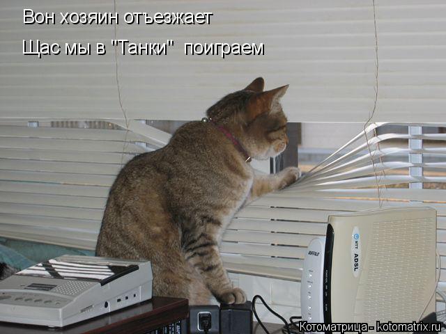 "Котоматрица: Вон хозяин отъезжает Щас мы в ""Танки""  поиграем"